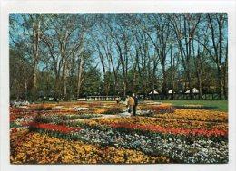 GERMANY  - AK 231206 Stuttgart - Bundesgartenschau 1977 - Unsere Schloßgartenanlage - Stuttgart