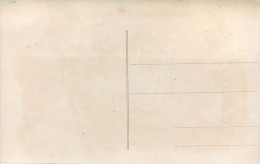 CARICATURE GUERRE 1914  ATTENTI FIASCHI MAT DE COCAGNE CARTE ITALIE ANTI ALLEMANDE  VATERLANDSLIEBE PROPAGANDE - Guerre 1914-18