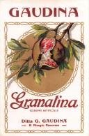 """01554 """"GRANATINA SCIROPPO ART. - DITTTA G. GAUDINA""""  ETICHETTA ORIGINALE, ANNI '30 - ORIGINAL LABEL , YEARS' 30. - Frutta E Verdura"""