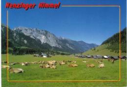 Autriche - Nenzing - Vache - Nenzing
