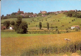 29/FG/15 - ASTI - ISOLA D´ASTI - Panorama - Asti