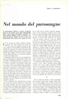NEL MONDO DEL PUROSANGUE 1961 ARTICOLO RITAGLIATO DA GIORNALE - Victorian Die-cuts