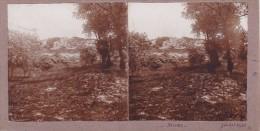 Superbe Photo De Dunes Dans Le Pas De Calais Juillet 1930 Vegetation  Arbre Flore Nature  Originale De Cette Epoque - Stereoscopic