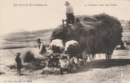 LES VOSGES PITTORESQUES - LA FENAISON DANS LES VOSGES - 88- - Autres Communes