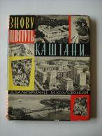Ukraine  photo book 'Chestnuts flower again' Dmitri Baltermants &  Nikolai Kozlovsky Kiev 1960