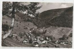 D555-Aftersteg-Totalansicht - Vue Totale-1956 - Autres