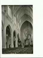 Tongerlo Abdij Norbertijner Binnenzicht Van De Kerk - Westerlo
