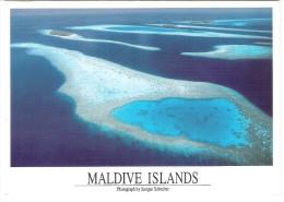 Maldiven - Maldives - Nice Stamp - Maldiven