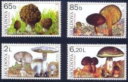 Moldova Moldavie 2007  Yvertn° 502-05 ***  MNH Cote 12,00 Euro Champignons Flore - Moldavie