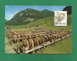 Liechtenstein  1989 , Viehmarkt - Herbstbräuche (III) -  Maximum Card - Ausgabetag 4. Sept. 1989 - Kühe