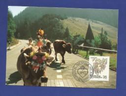 Liechtenstein  1989 , Alpabfahrt - Herbstbräuche (III) -  Maximum Karte - Ausgabetag 4. Sept. 1989 - Kühe