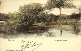 Genck - Genk - Un Coin De Marais - Carte En Couleur - Nels-Série:60-N°2 - Circulé: 1901 - Genk