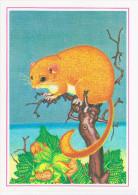 Latvia USSR 1987 Fauna, Hazel Dormouse Or Common Dormouse, Muscardinus Avellanarius, Rodent Rodents - Animaux & Faune