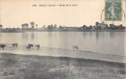 45.GUILLY BORDS DE LA LOIRE ANIME DE VACHES - Other Municipalities