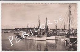 56  La Trinité Sur Mer  Chalutiers Au Port - La Trinite Sur Mer