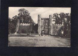 54315     Regno  Unito,    Battle Abbey  Gateway,  NV - Non Classificati