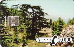 TARJETA DE EL LIBANO DE 10000 LIVRES DE SODETEL (MUY RARA) - Líbano