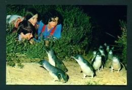 AUSTRALIA  -  Philip Island  Penguin Parade  Prepaid Postage  Unused Postcard As Scans - Melbourne