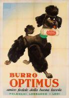 Postcard - Poster Reproduction - Burro Optimus Polenghi Lombardo Lodi 1953 - Publicidad