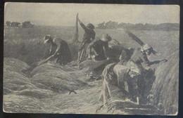Suiza. Tarjeta Cruz Roja *Croix Roige. Suisse* Nueva. - Cruz Roja