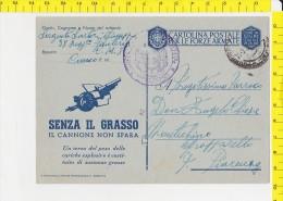 SP-992 POSTA MILITARE 38'' REGGIMENTO FANTERIA C. M. 8 CUNEO - 1900-44 Vittorio Emanuele III
