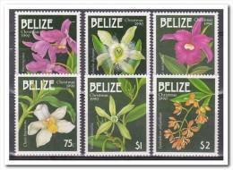 Belize 1990, Postfris MNH, Flowers, Orchids - Belize (1973-...)
