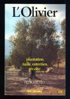 L´ Olivier, Plantation, Taille, Entretien, Recolte Par Felix Ereteo (15-2032) - Garden