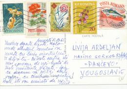 ROMANIA, POSTA ROMINA ROMANA ,STAMP, NICE STAMPS , Flowers,  - Vintage  Postcard - 1948-.... Repúblicas