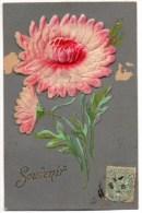 CPA   Fleur  SOUVENIR  Ajoutis   9527 - Flowers, Plants & Trees