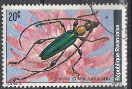 Ruanda, 1978 - 20c Euporus Strangulatus - Nr.865 Usato° - Rwanda