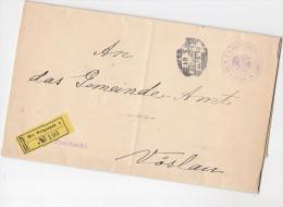 1900 WIENER NEUSTADT Austria GOVERNMENT REGISTERED COVER (8 Page DOCUMENT)  To VOSLAU - 1850-1918 Empire