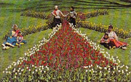 It's Tulip Time Every Year In May And Tulips By The Thousands Bl