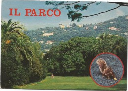 B3519 Genova - Nervi - Il Parco E Gli Scoiattoli - Squirrels Ecureuils / Viaggiata 1982 - Genova (Genoa)
