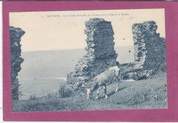 54.- MOUSSON .- Les Vieilles Murailles Du Château Et La Vallée De La Moselle - Francia