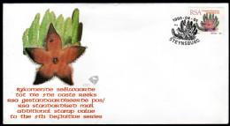 RSA 1993 - Sukkulenten, Stapelia Grandiflora - FDC - Sukkulenten