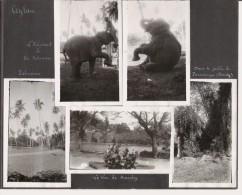 CEYLAN ET KANDY (SRI LANKA) 5 PHOTOS ANNEES 30 - Luoghi