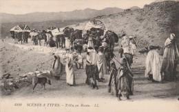 MAROC - SCENES ET TYPES - TRIBU EN ROUTE - Morocco
