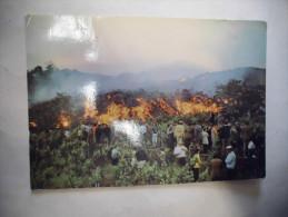 LE FRONT LAVIQUE QUI AVANCE EN DETRUISANT LES CULTURES...ETNA EN ERUPTION. - Disasters