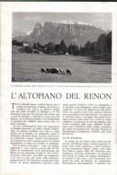 L'ALTOPIANO DEL RENON   1939 ARTICOLO  RITAGLIATO DA GIORNALE - Immagine Tagliata