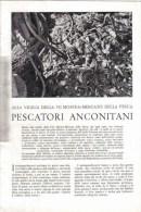 PESCATORI ANCONITANI   1939 ARTICOLO  RITAGLIATO DA GIORNALE - Immagine Tagliata