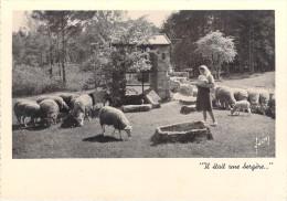 Métier Métiers (Berger Moutons BERGERE) Il était Une Bergère CPM - Editions :F.I.B N°4*PRIX FIXE. - Artisanat