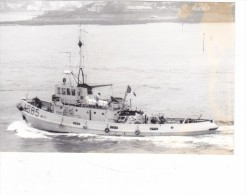 Batiment Militaire Marine Francaiser Remorqueur A 685 Robuste  En Rade A Toulon 21/9/1992 - Boats