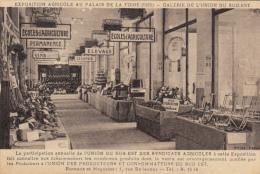 69  EXPOSITION AGRICOLE AU PALAIS DE LA FOIRE  1925  GALERIE DE L'UNION DU SUD EST - Esposizioni