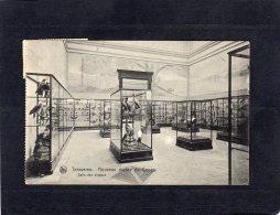 54476    Belgio,  Tervueren,  Nouveau Musee Du Congo,  Salle Des Oiseaus,  VG  1925 - Tervuren