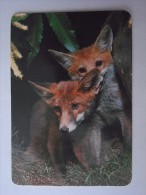1 CALENDAR CALENDARIO CALENDRIER KALENDER SMALL - ANIMAL RAPOSA FOX