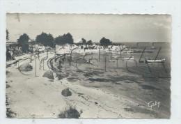Mesquer-Quimiac (44) : La Plage De Toul-Ru à  Quimiac En 1967 (animé) PF. - Mesquer Quimiac