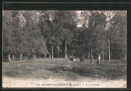 CPA Nogent Le Phaye, La Prairie - Francia