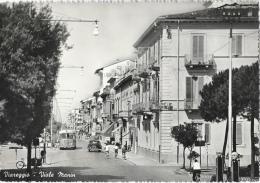 Viareggio - Viale Manin - Bus - Fotocelere - Viareggio