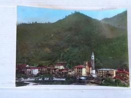 """FOTO: TEMA """"GIARDINO"""" MOVIMENTATA CON SCRITTA """"OMAGGIO"""" - F/P - COLORI - LEGGI - Postcards"""