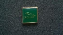 Pin Jaguar -P176 - Jaguar